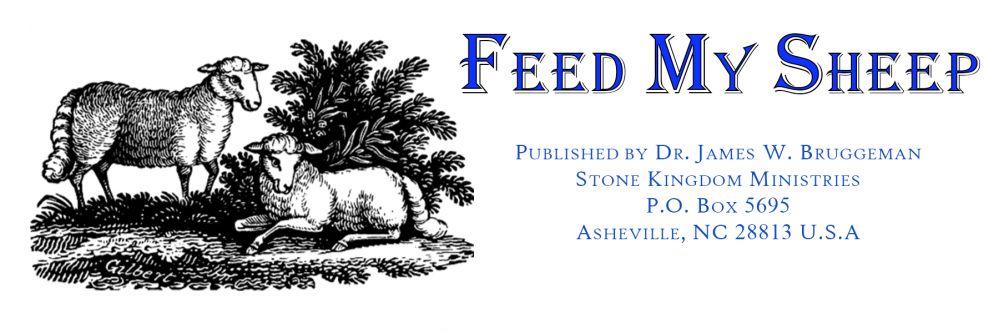 Feed My Sheep by Dr. James Bruggeman